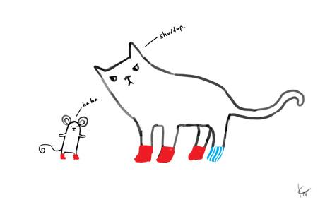 catmousesocks