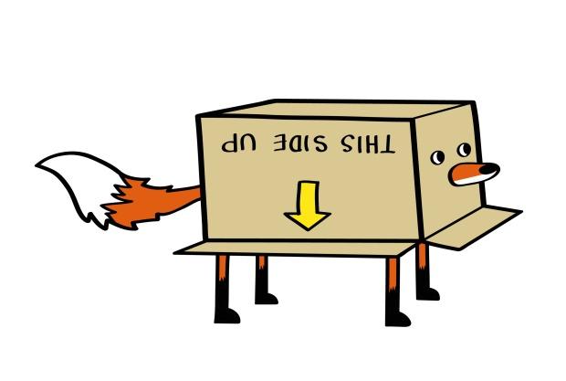 box fox-01